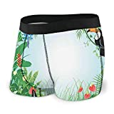Men's Boxer Briefs,Exotic Forest with Toco Toucan Bird Anthurium and Hibiscus Flowers Jungle Ecology ,Boxer Briefs Underwear Breathable Stretch Boxers Shorts Sports Trunks XXL