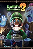 1art1 Super Mario Poster - Luigi's Mansion 3 You're in for A Fright (91 x 61 cm)