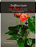 Anthurium: How to grow and care (English Edition)