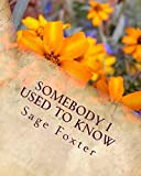 Somebody I used to know (English Edition)