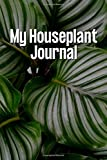 My Houseplant Journal: Calathea Orbifolia Daily Bullet Journal, Watering and Care Habit tracker